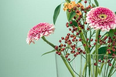 Flowers - 2