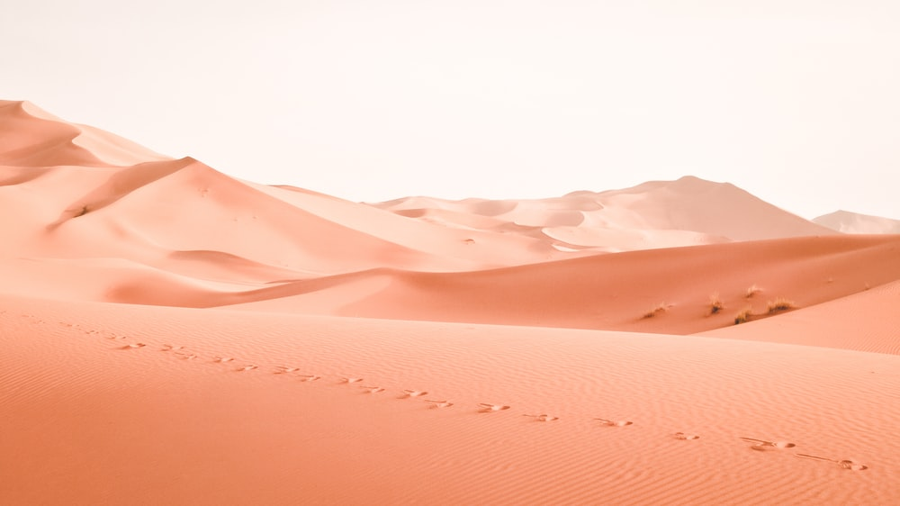 How to Find Water in the Desert?