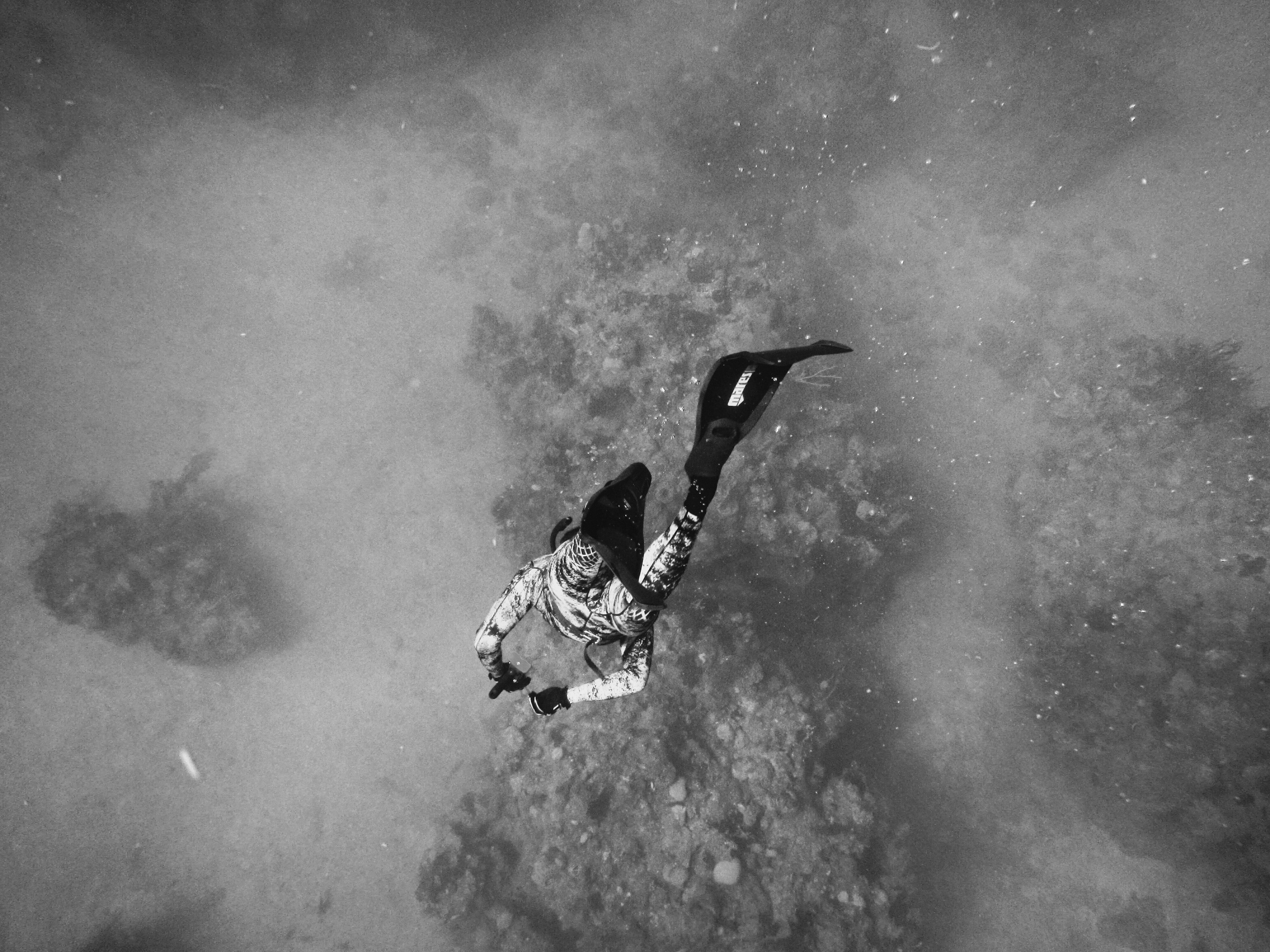Black and white shot of diver underwater in Guantánamo Bay