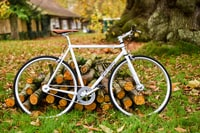 landscape photography of white fixed-gear bike