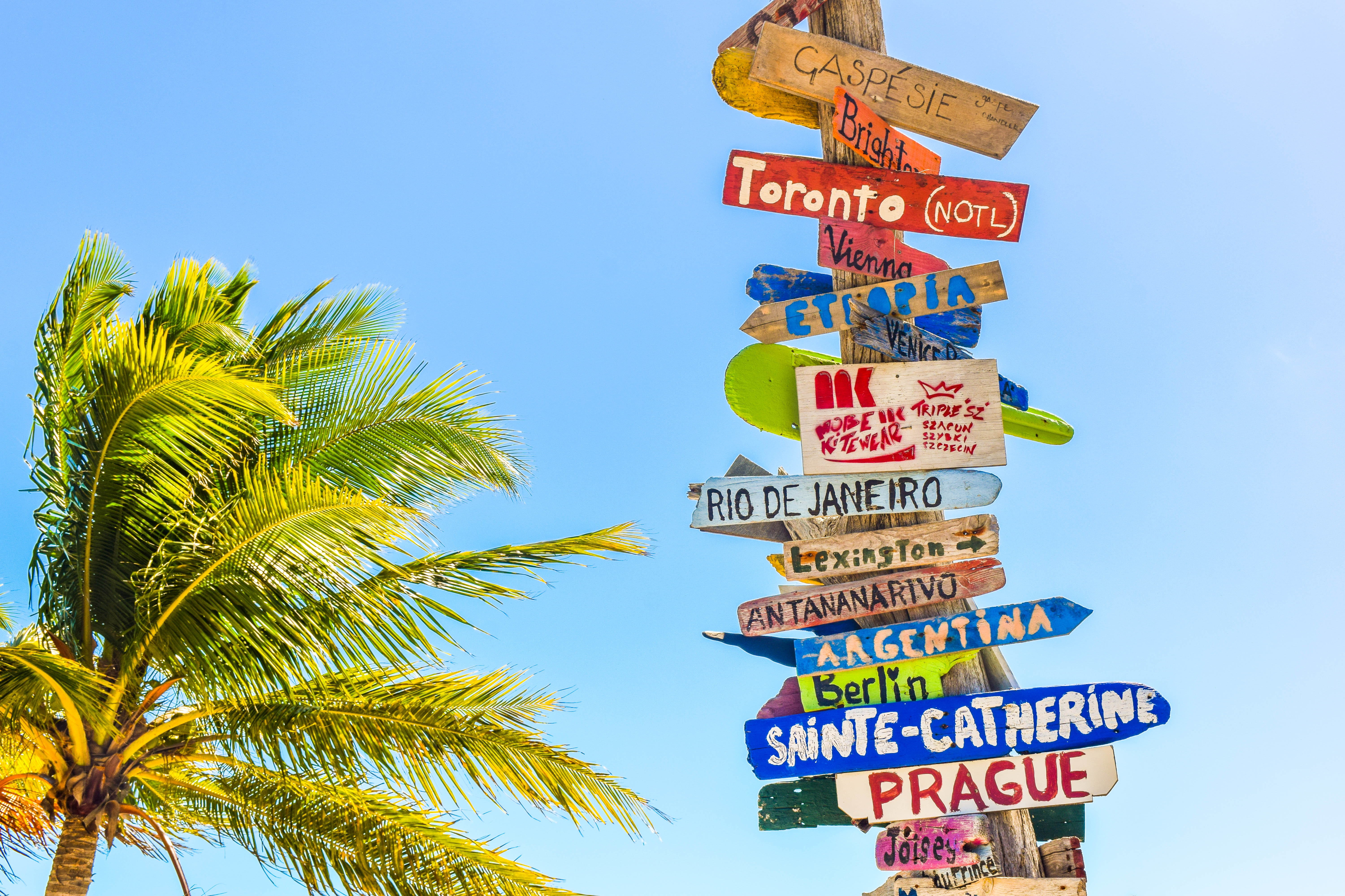 Directional signs on a wooden pole by the palm tree at Long Bay Beach
