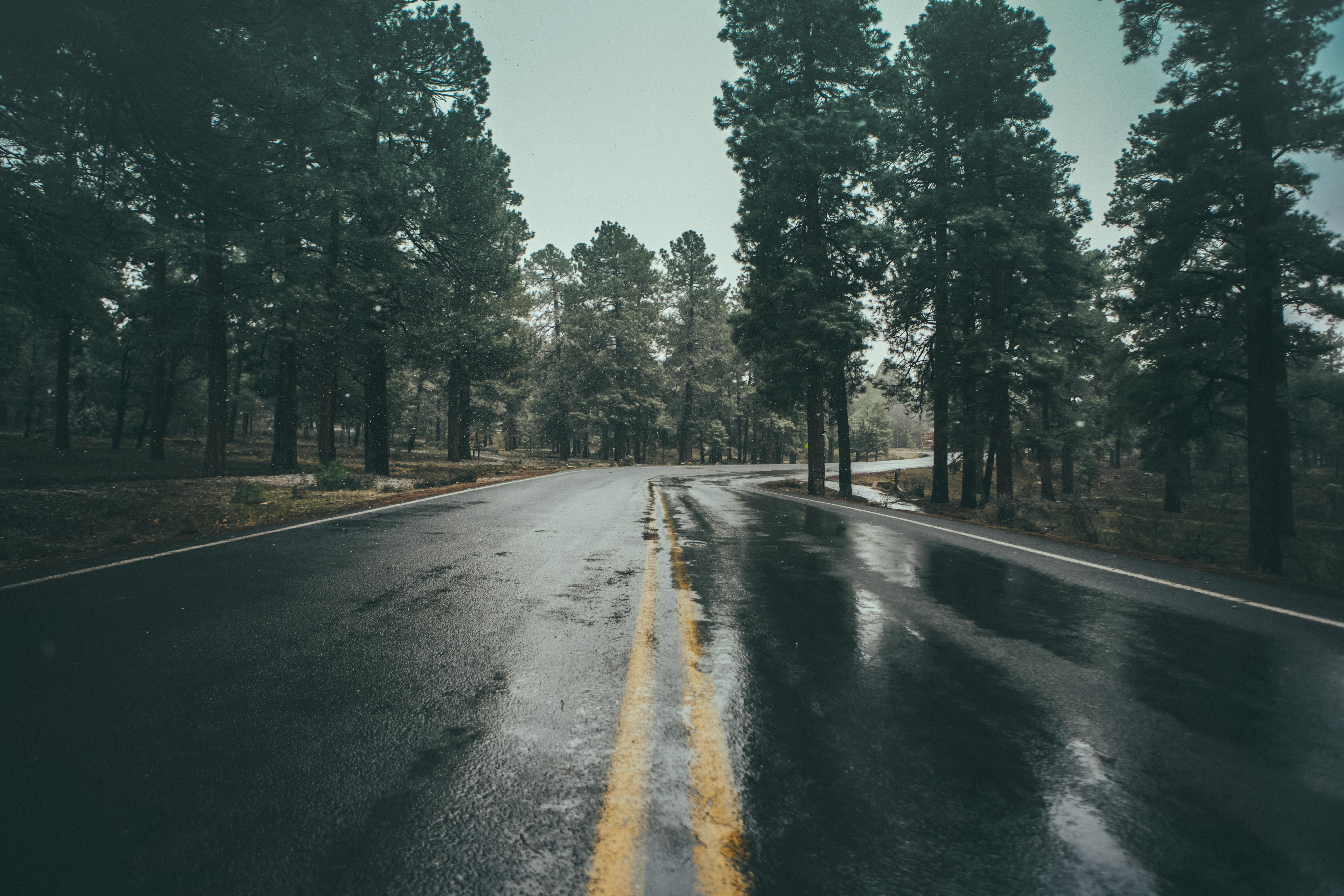 photography of wet asphalt road
