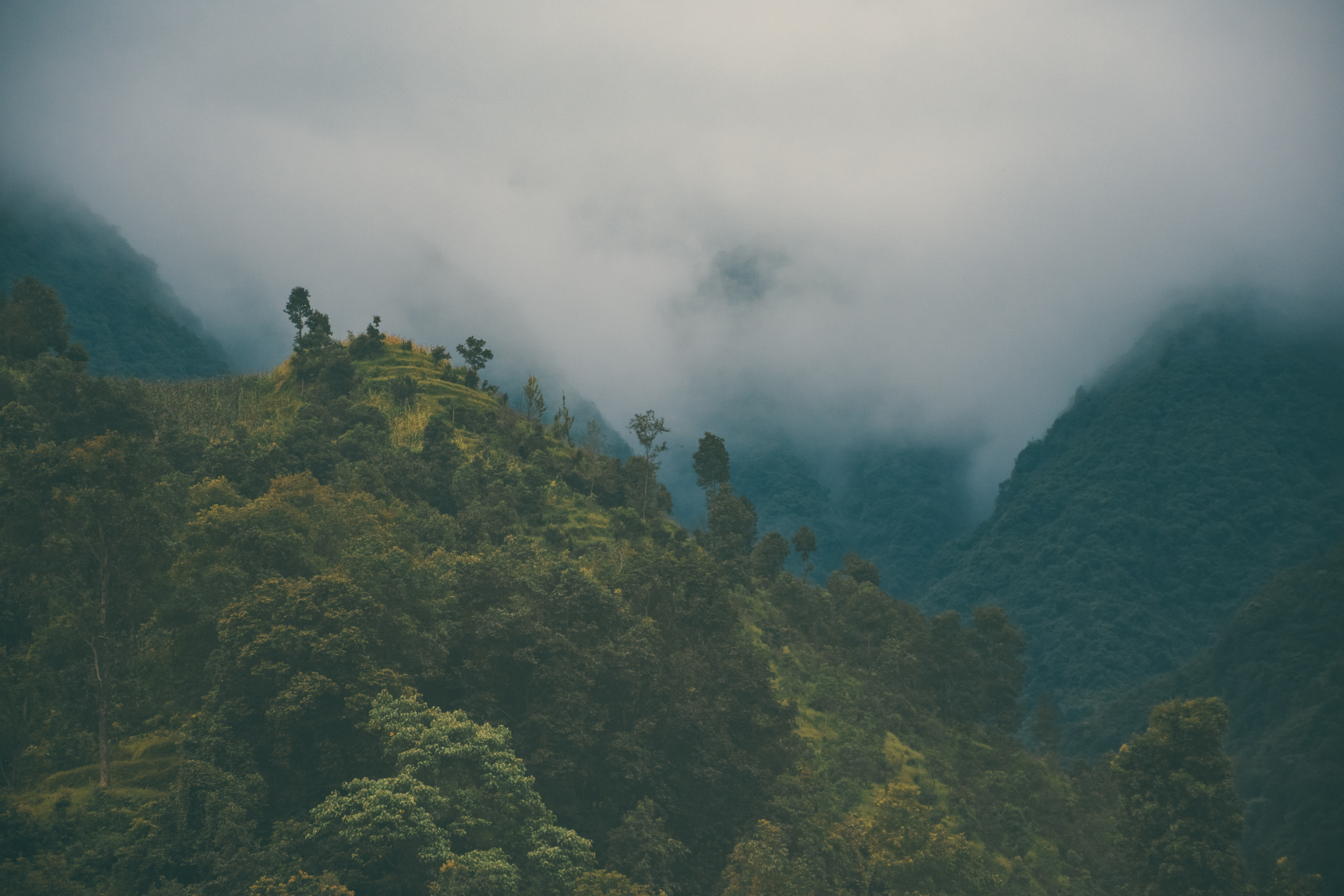 Fog over a wooded mountain valley in Nepal
