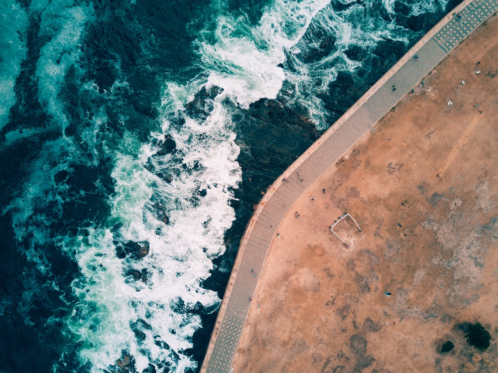 bird's-eye view photography of park near body of water