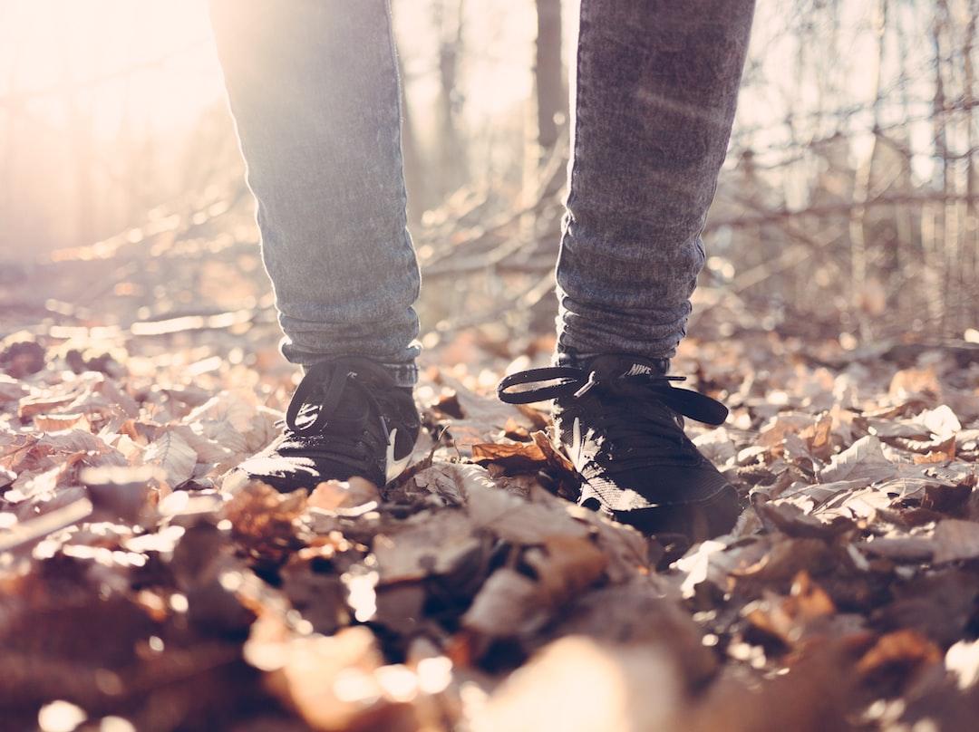 Skogsterapi långsam promenad i höstlöven