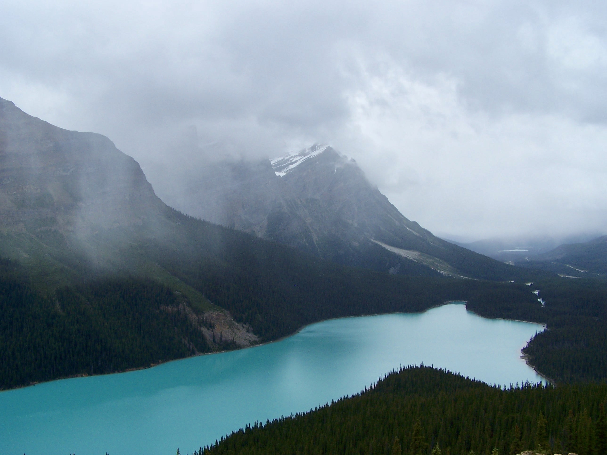 The beautiful Peyto Lake in British Columbia under gray clouds