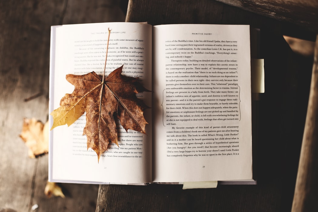 Open book with an autumn leaf