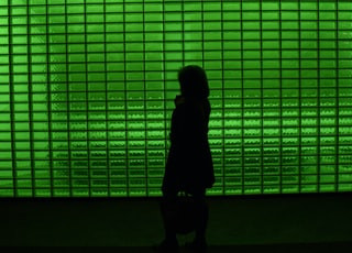 silhouette of person standing in front of green window blinds