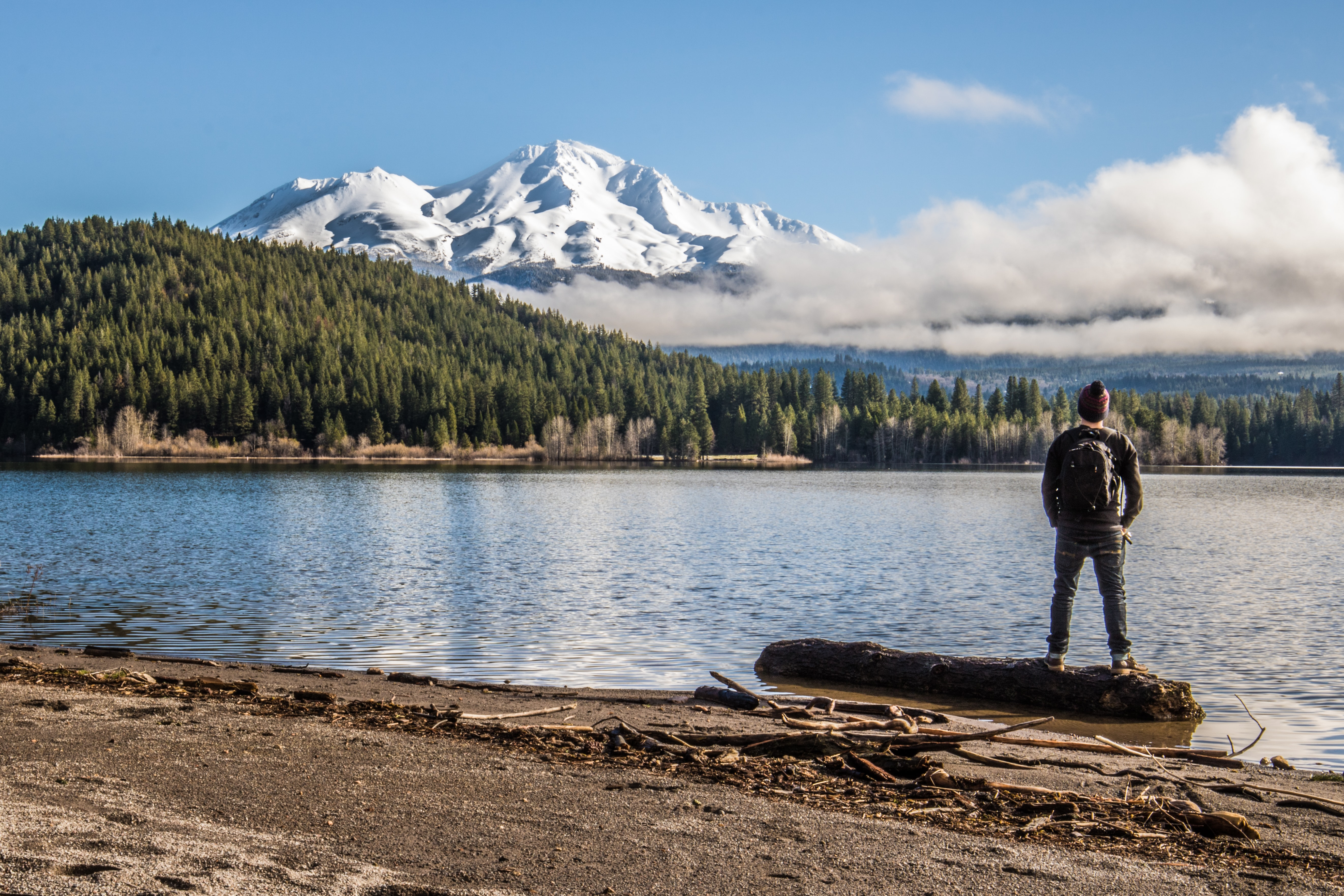 man standing beside body of water near green high trees and white mountain under blue and white sky during daytime