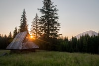 brown house near pine trees during sunset landscape photography