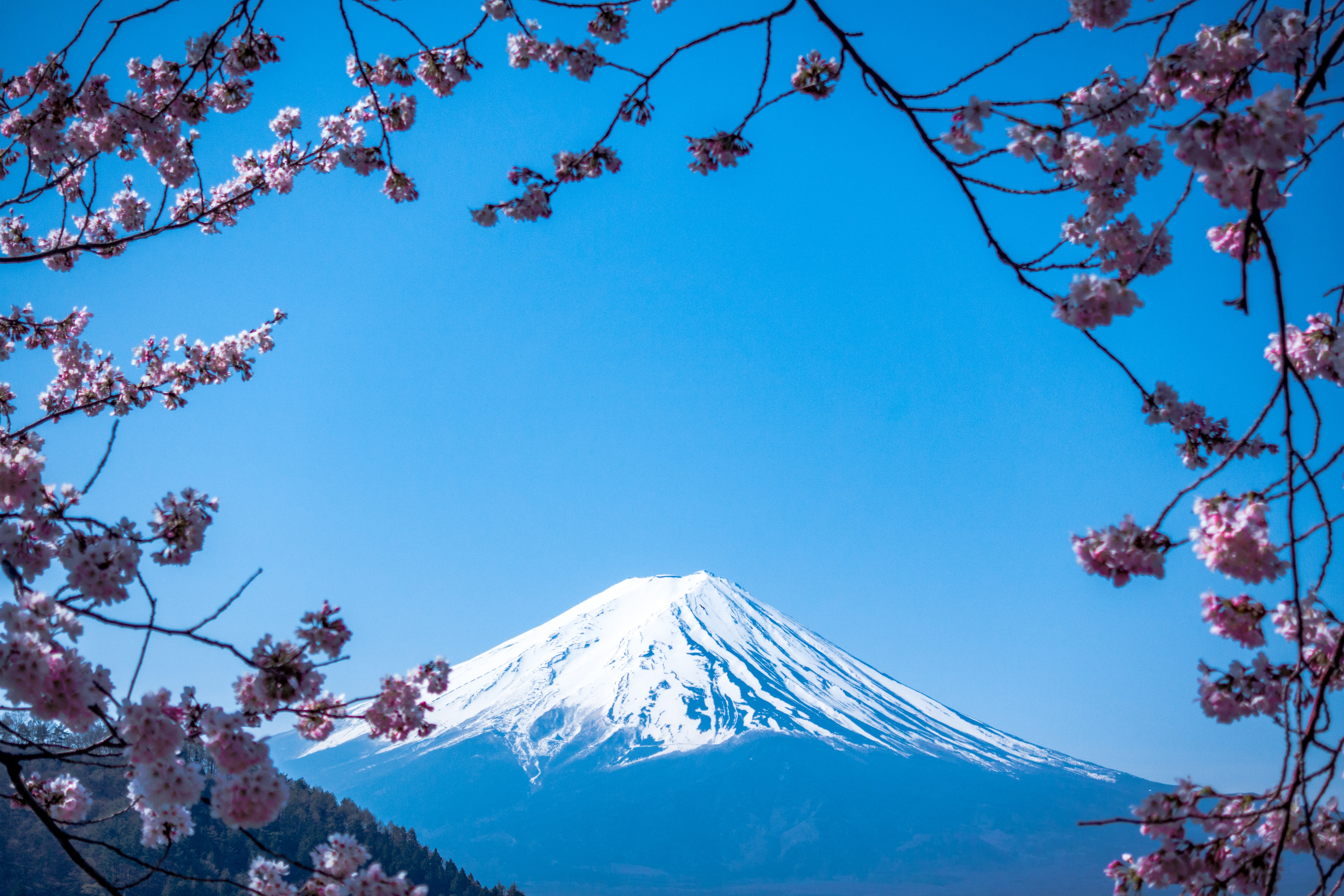 Japan Looks to Move Supply Chain