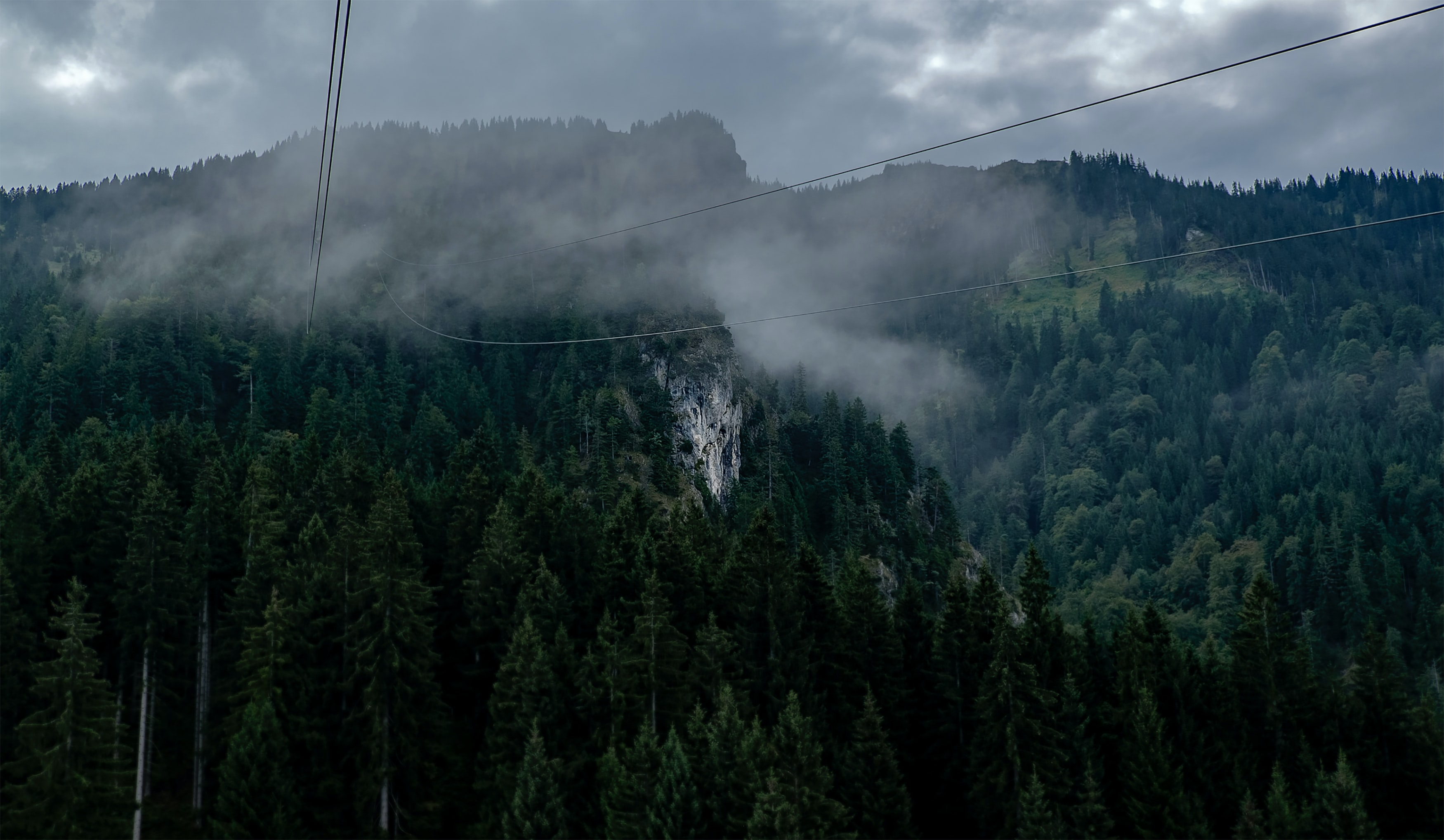 Wires hanging over a wooded mountain valley with rocky walls
