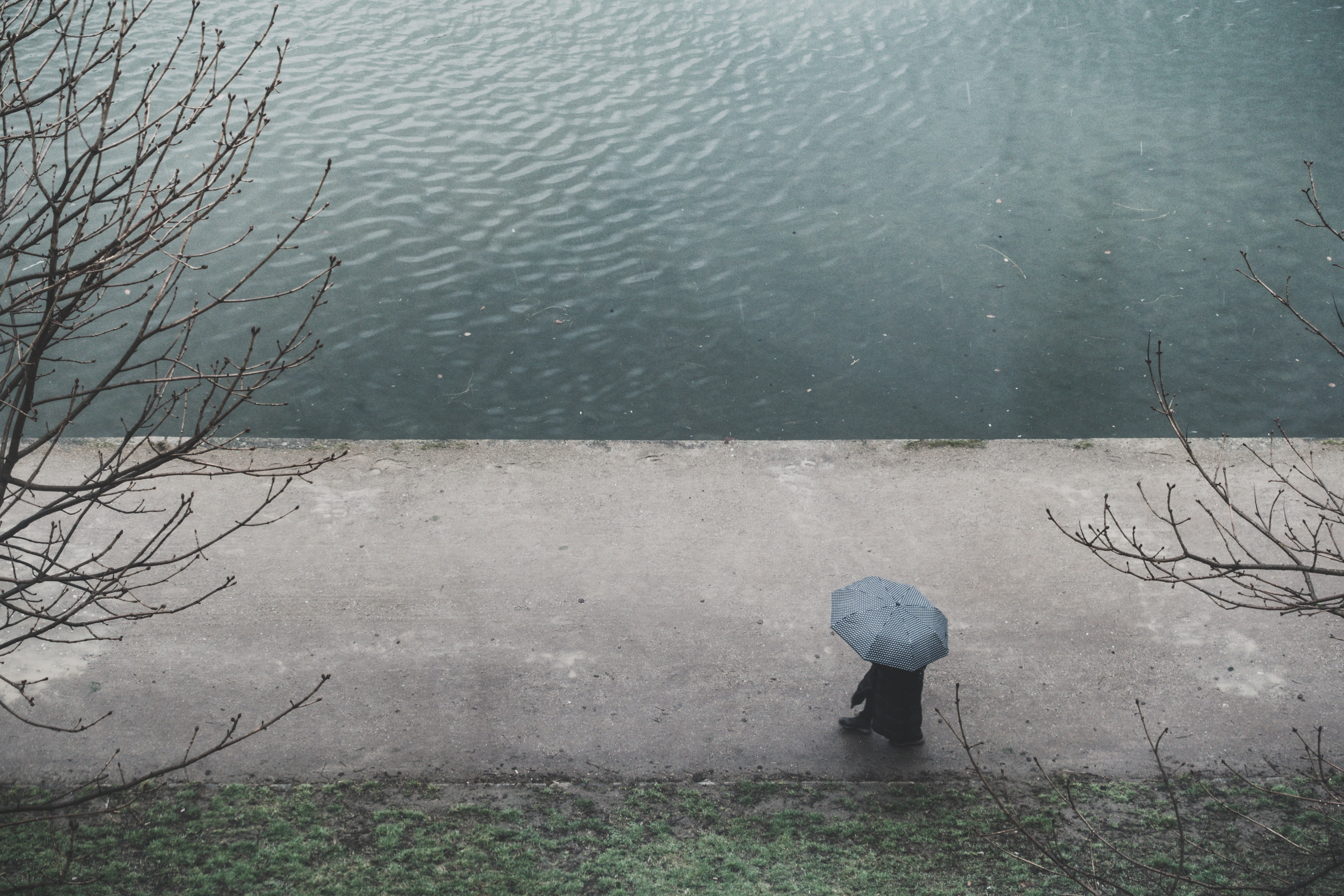 person with umbrella walking on road near body of water during daytime