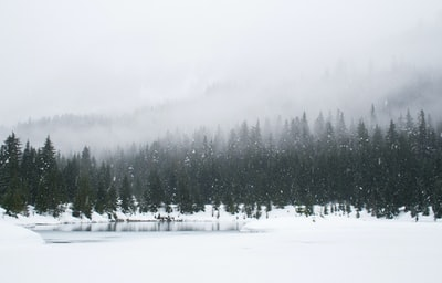 Snowshoeing on a snowy day at Gold Creek Pond.