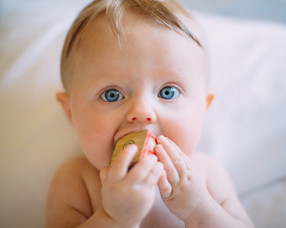selective focus photography of baby holding wooden cube