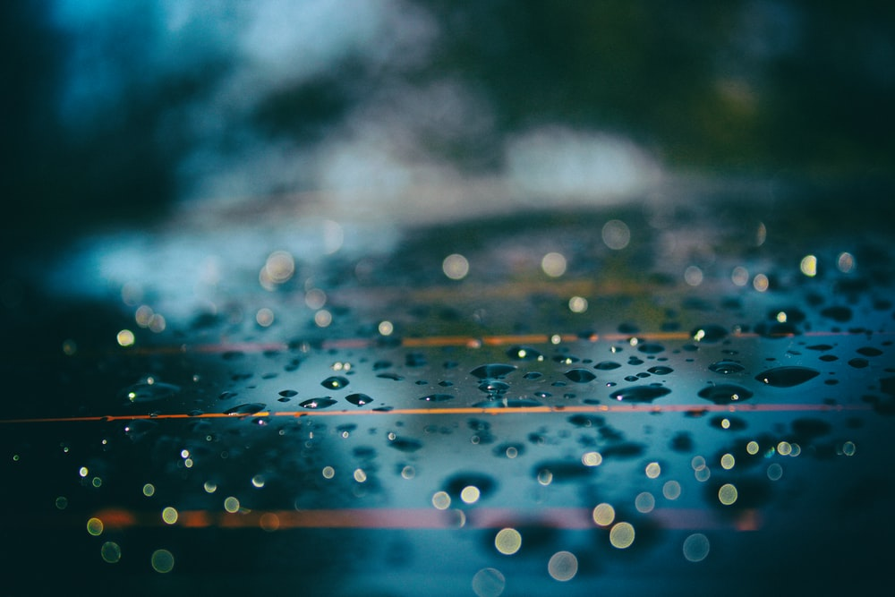 macro photo of raindrop