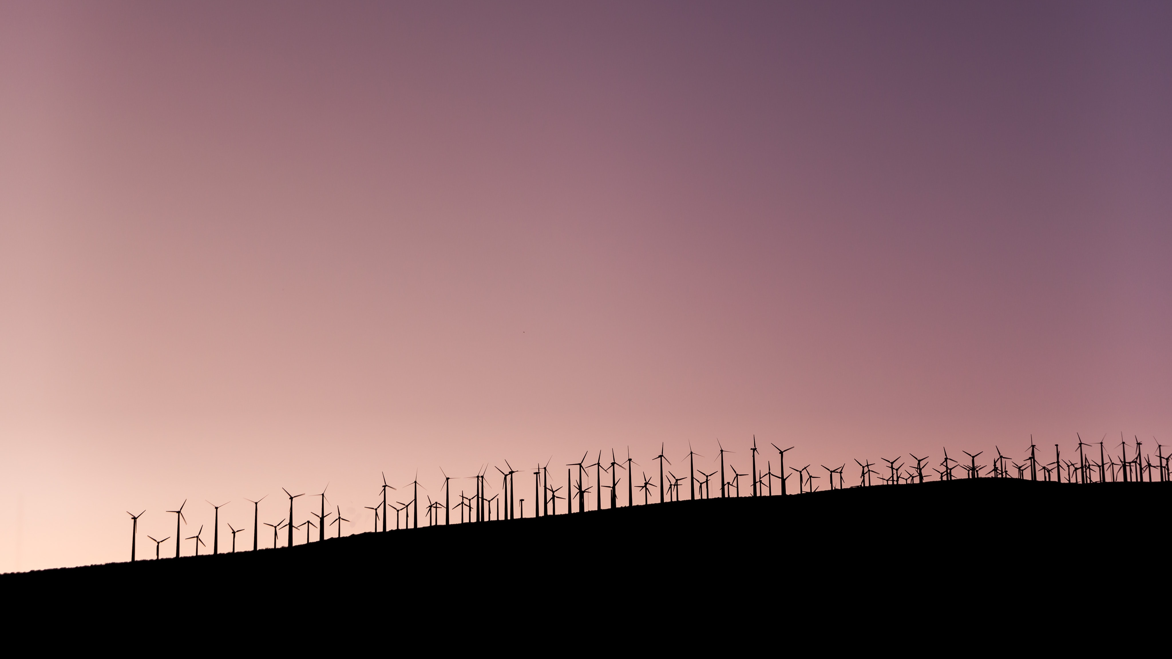 A large wind farm under a violet-hued sky in Palm Springs