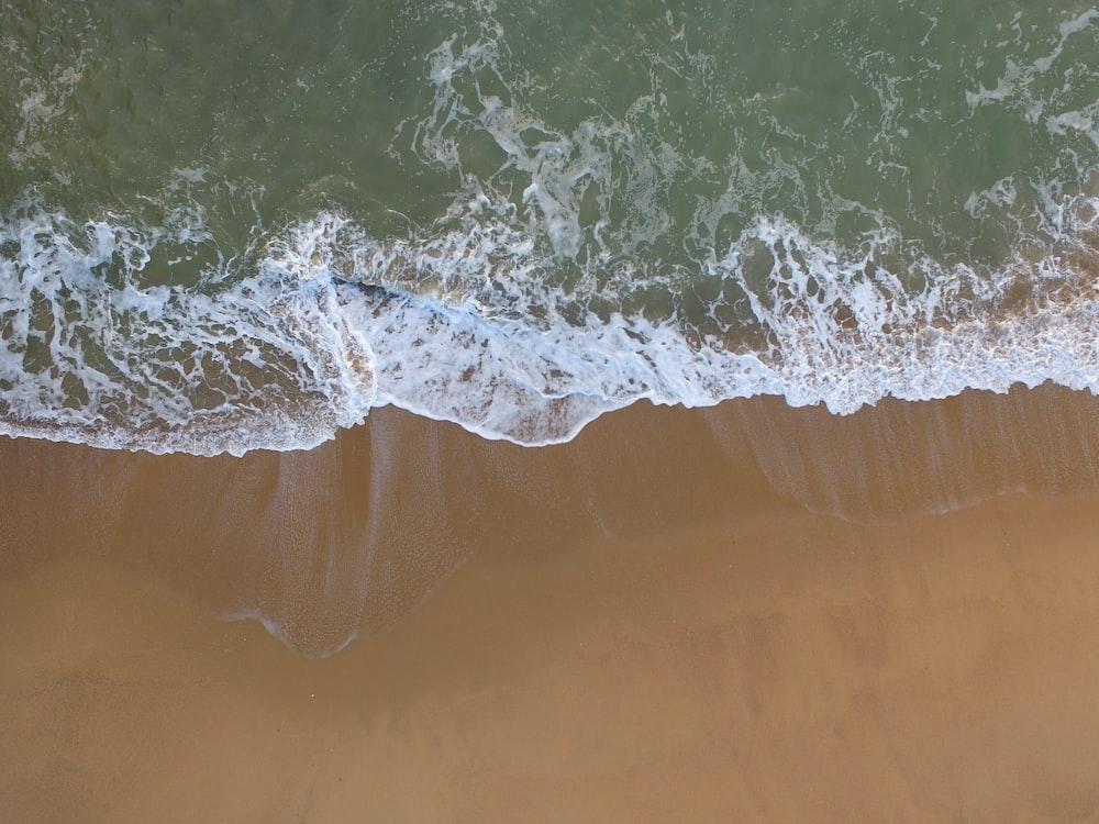 bird's eye photography of beach shore