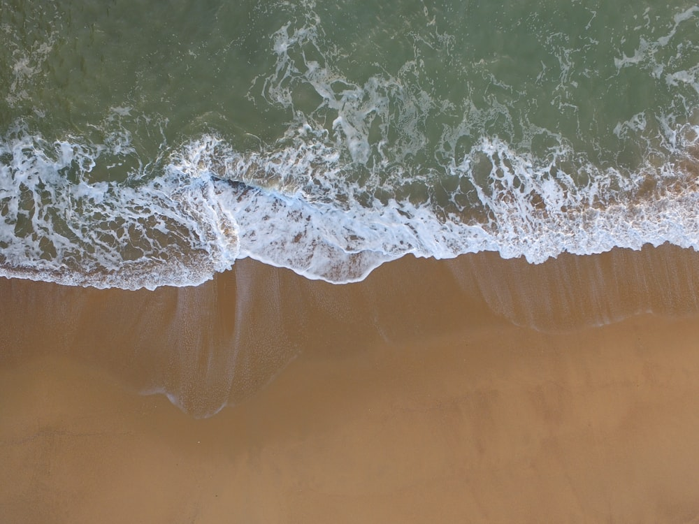 bird's eye photography of beach shore
