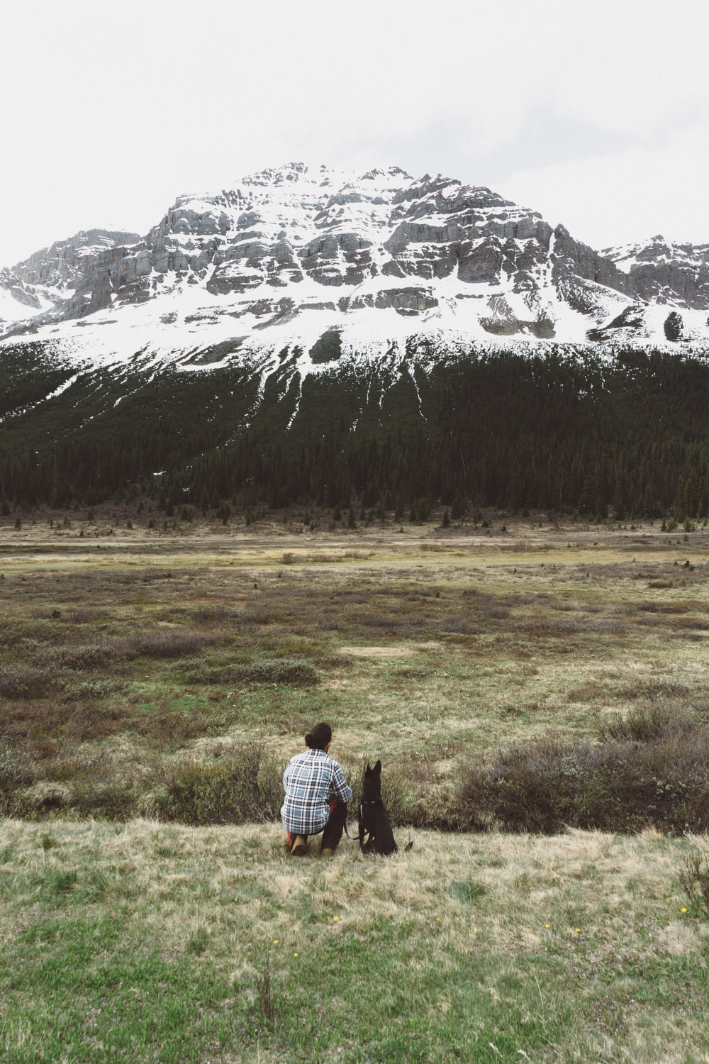 person sitting besides black dog while looking on black white and black mountain during daytime