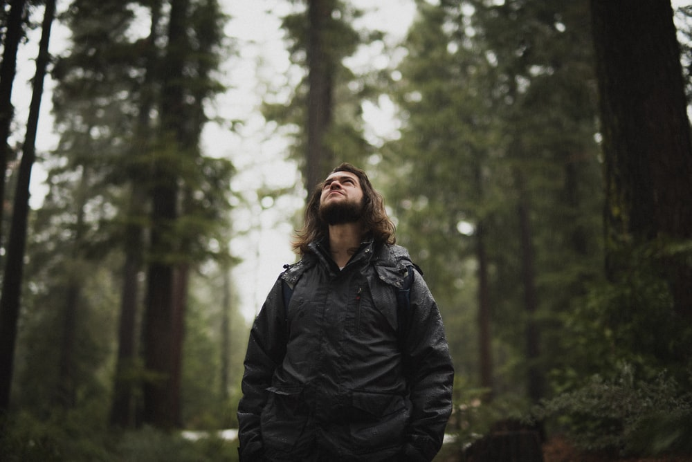 man wearing black jacket looking up surrounded with tall trees