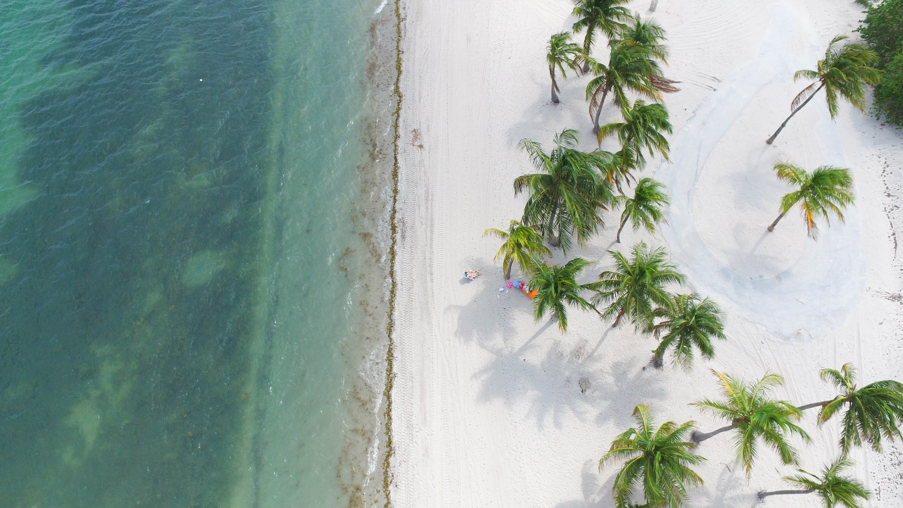 A drone shot of a person relaxing in the shade of palm trees on a white beach