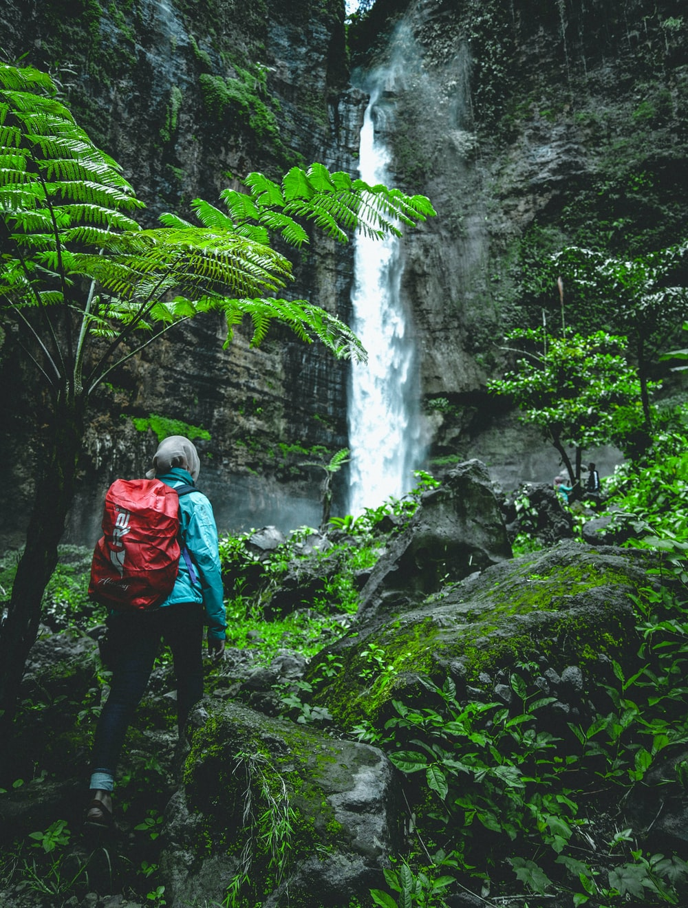 person walking towards waterfall at daytime