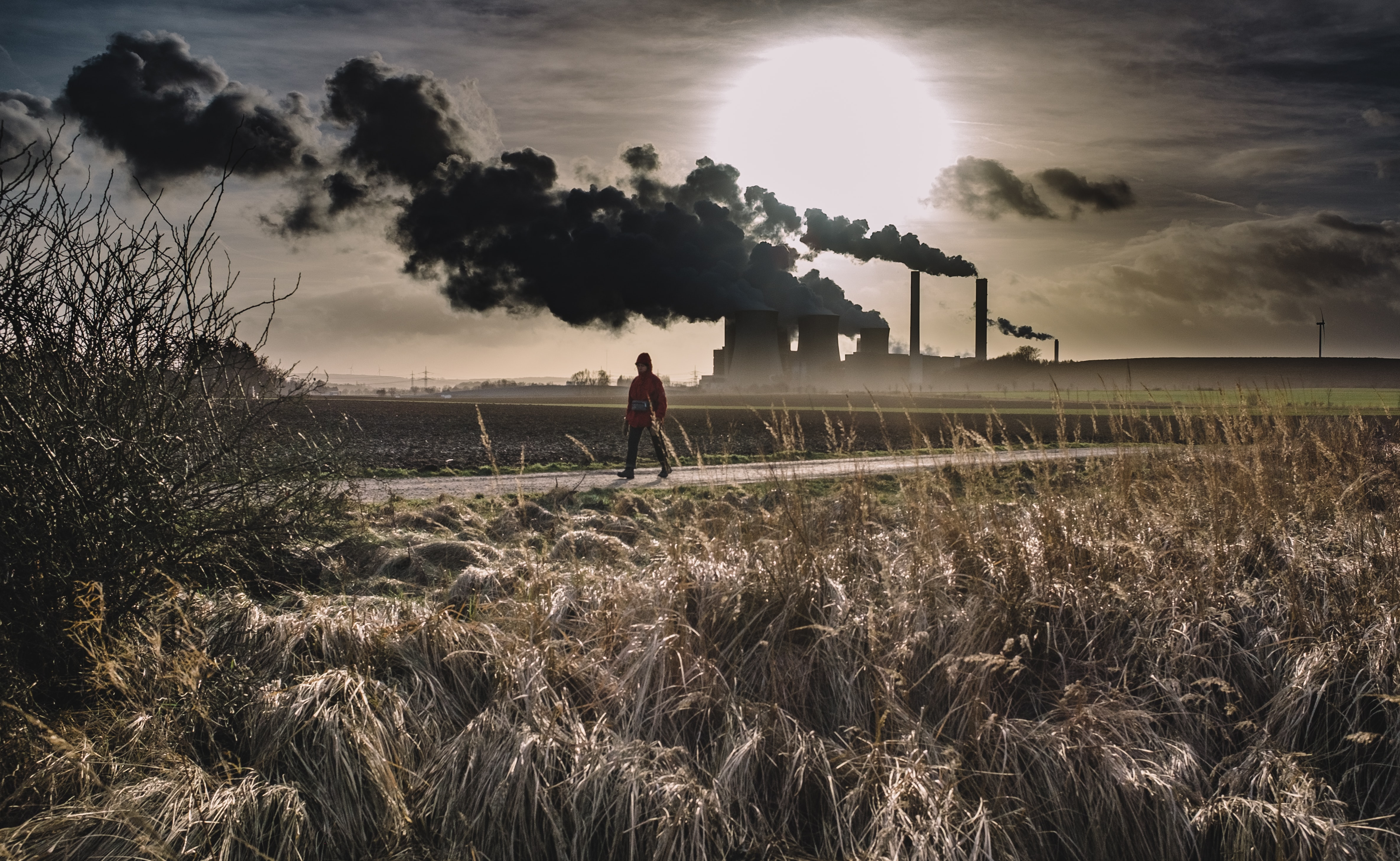 silhouette of person walking on pathway near factory