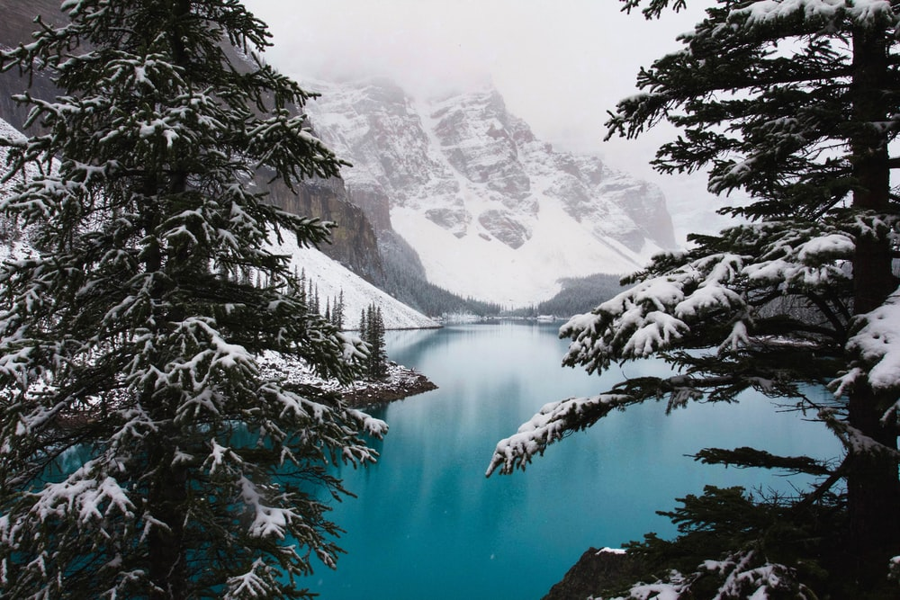 landscape photo of lake near gray snowy mountains