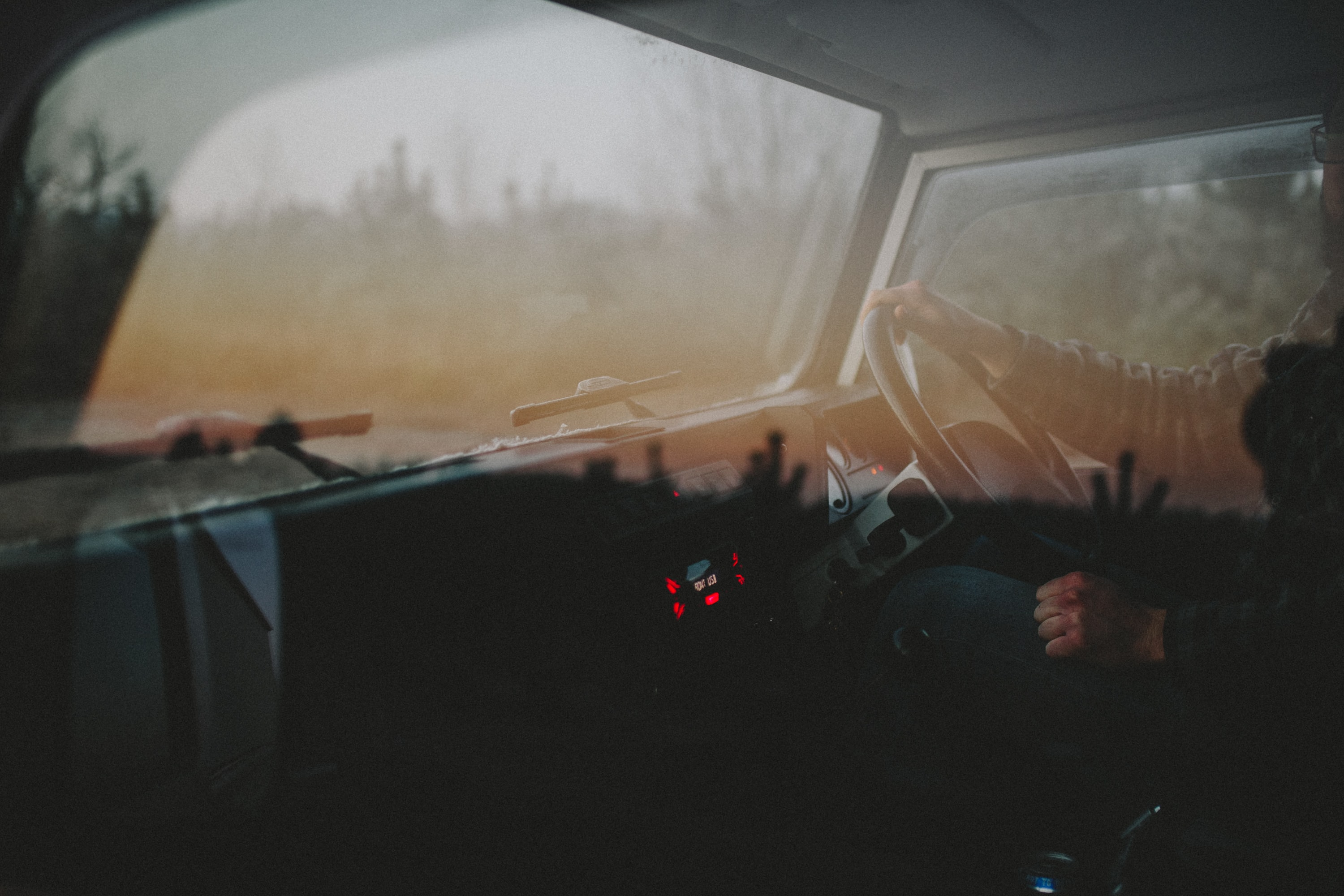 Looking into dashboard of car with driver and steering wheel, window reflects trees