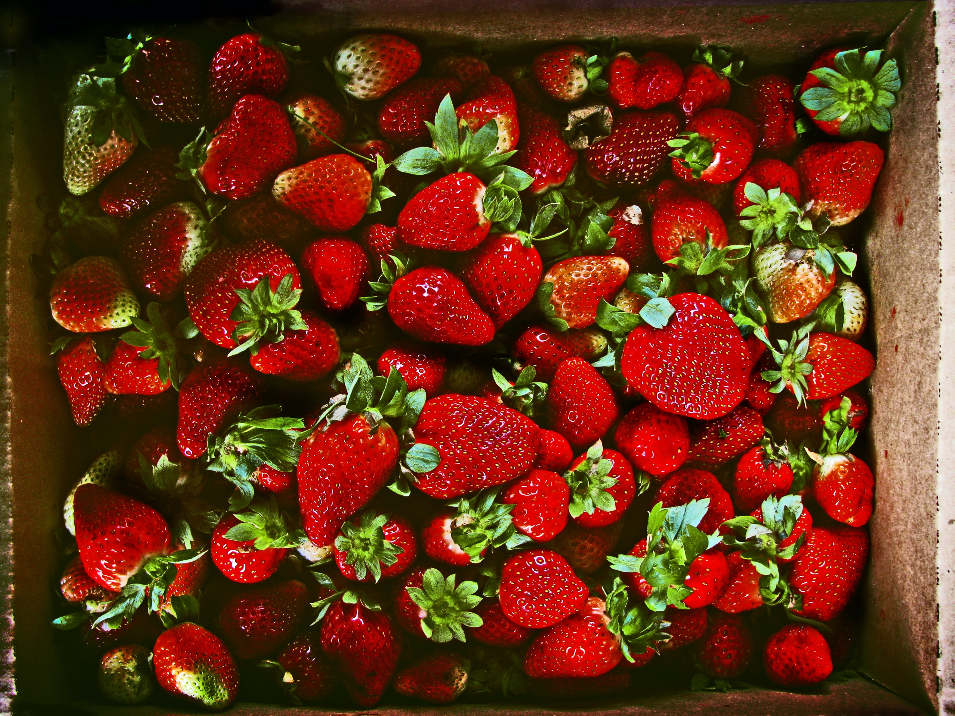 red strawberries in brown box