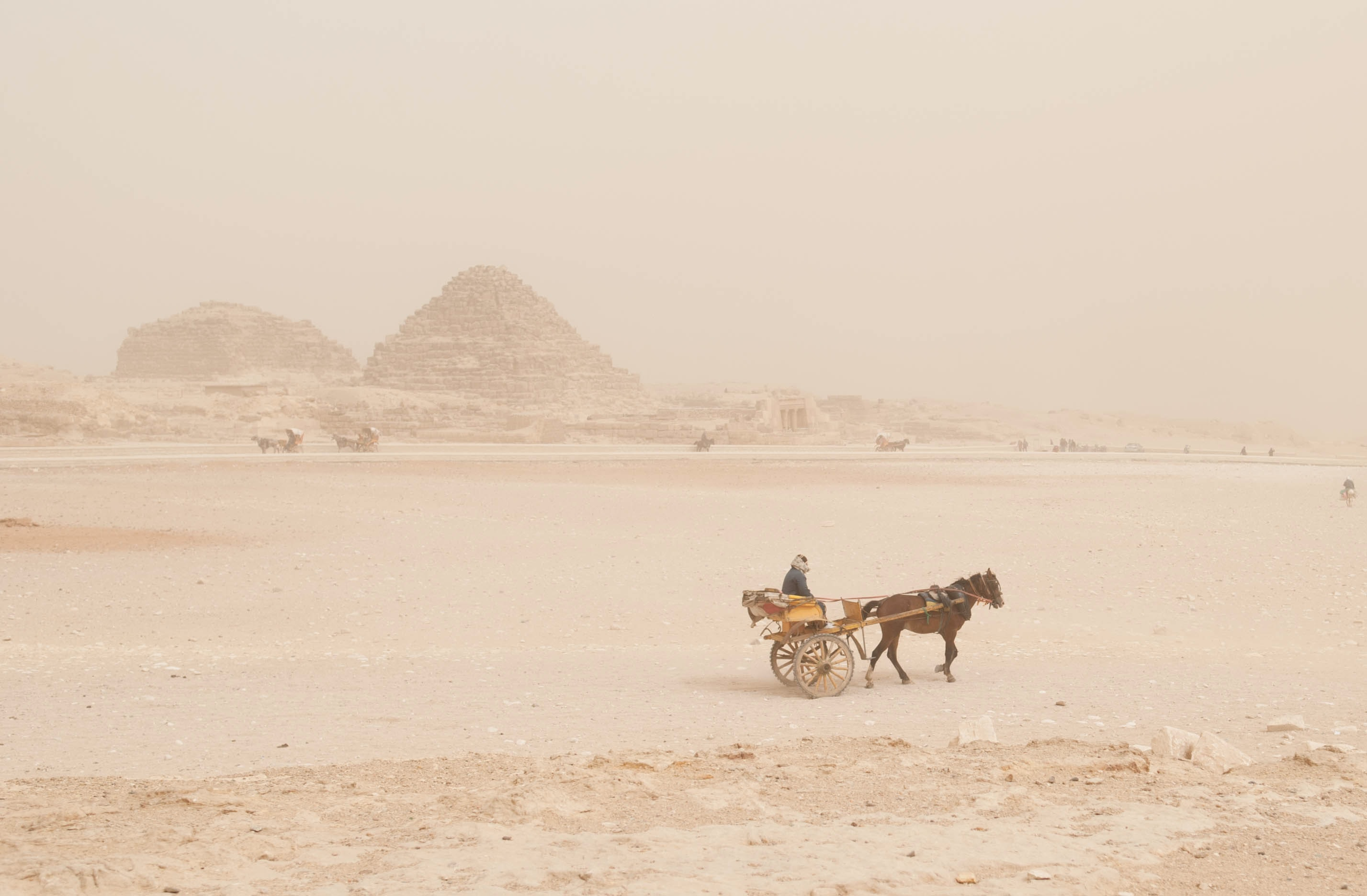 A woman sits on a small cart as a brown horse pulls it through the rocky desert
