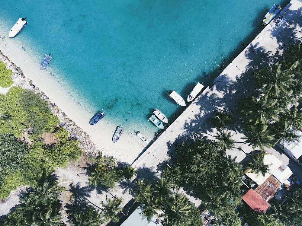 aerial photography of boats docked near shore