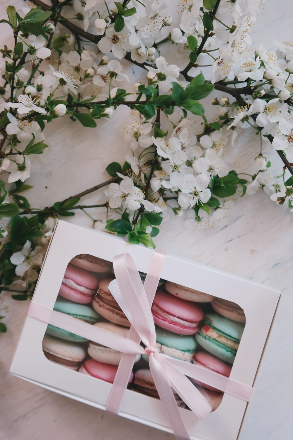 French macarons in white box