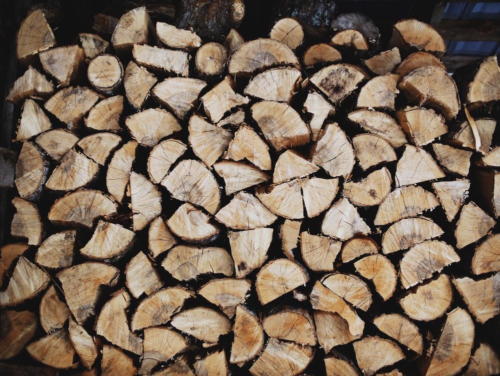 pile of brown log