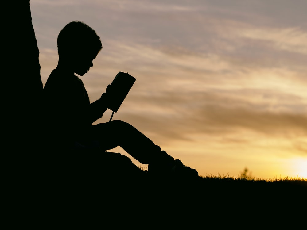 silhouette of child sitting behind tree during sunset