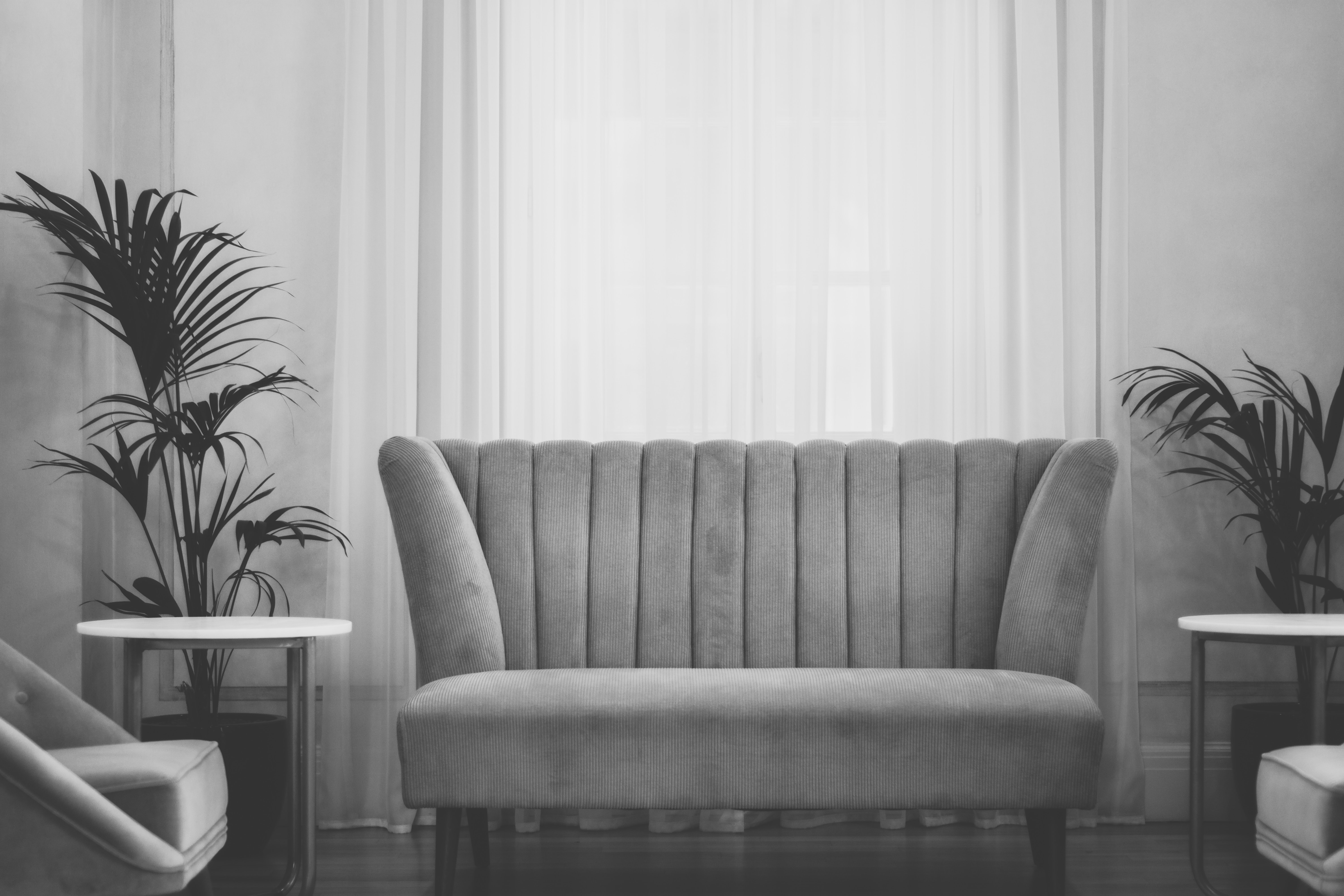 Modern living room with a couch and two tables and plants and curtains in the background seen through a gray filter