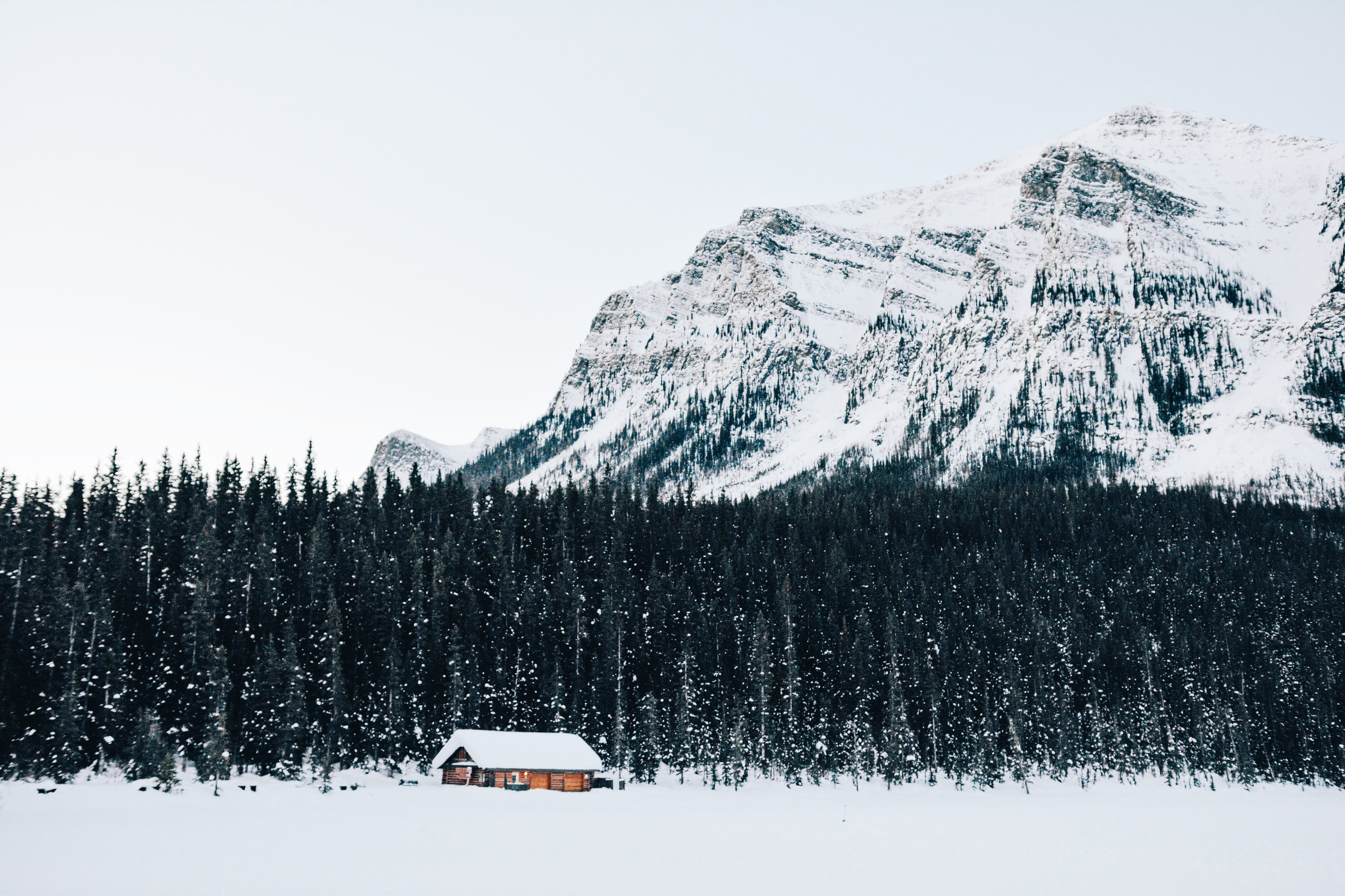 Cabin alone in the woods surrounded by a snowy winter landscape