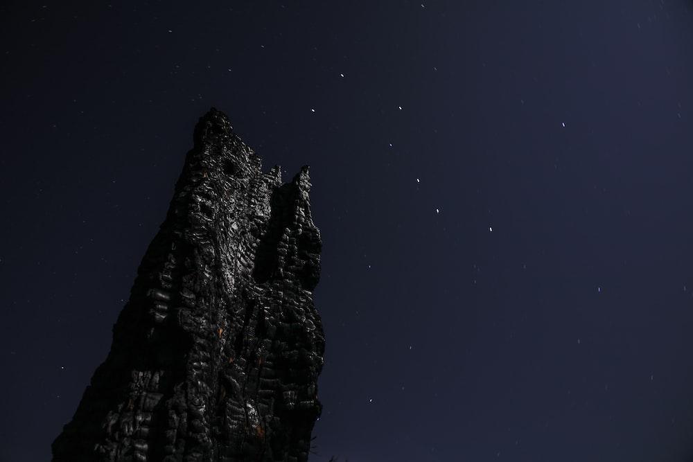 worm's-eye view of black rock