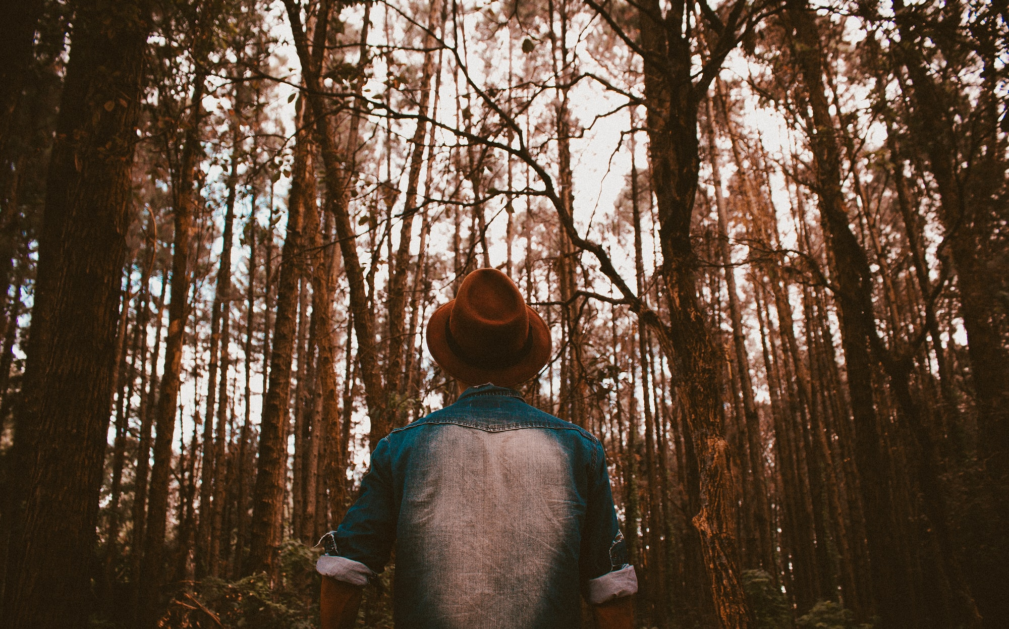 5 Key Areas For Personal Growth As A Software Developer