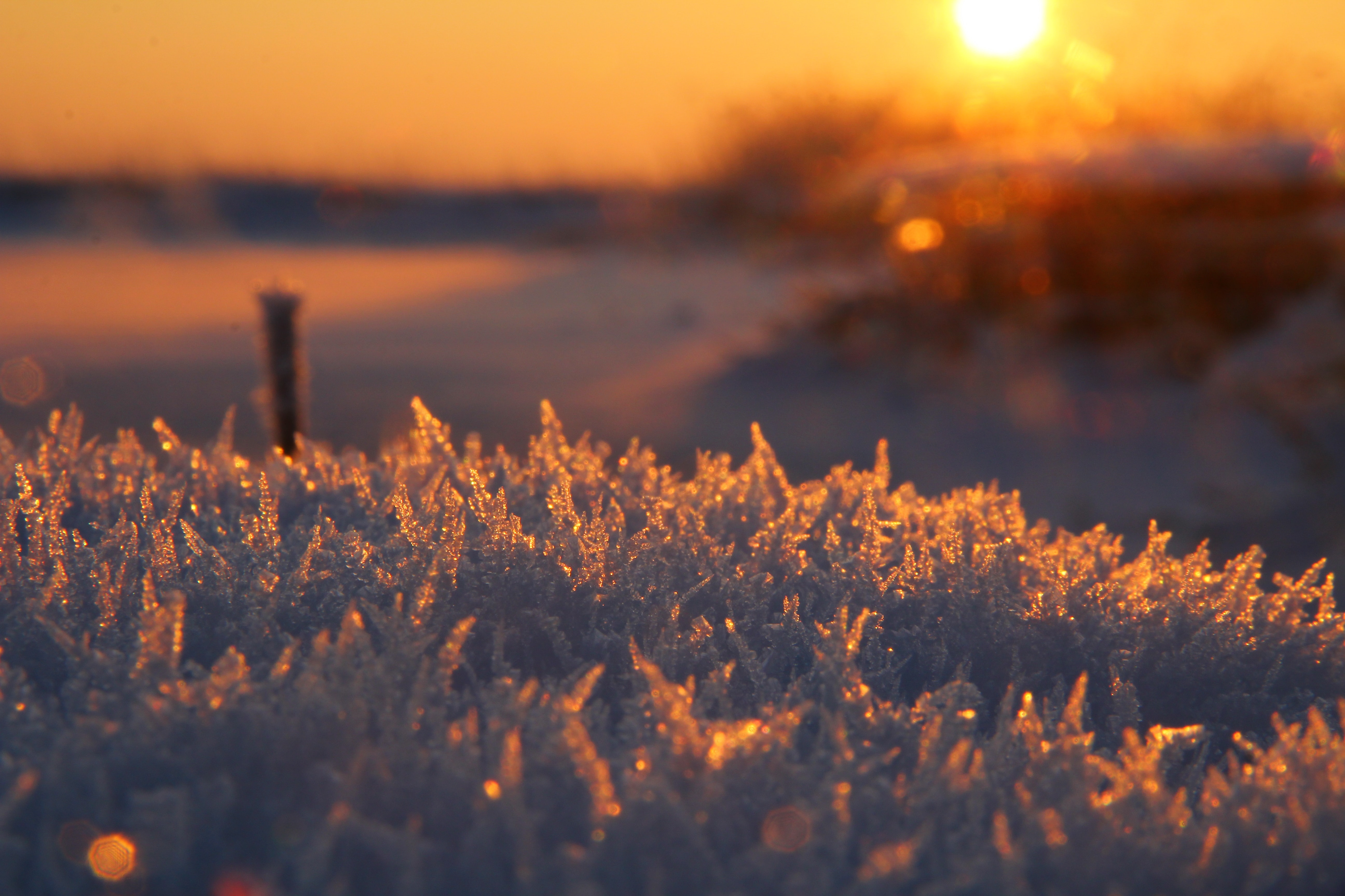 A macro view of frozen ice while the sun setting in Sestroretsk.