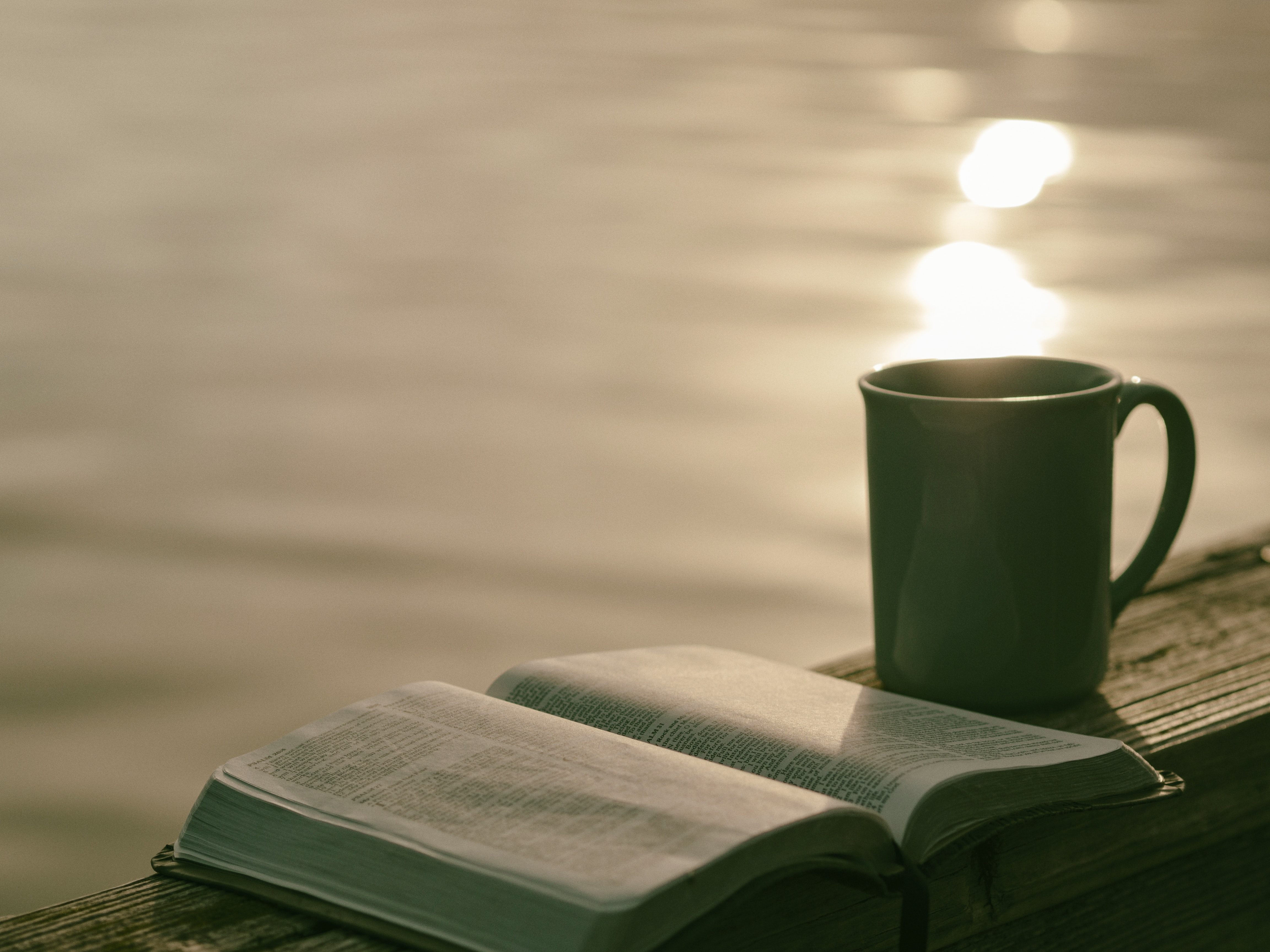 Book and cup by the water