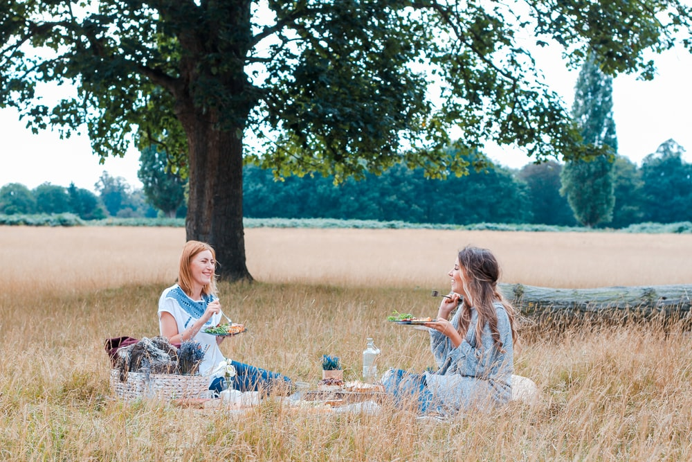unknown persons sitting on brown grass