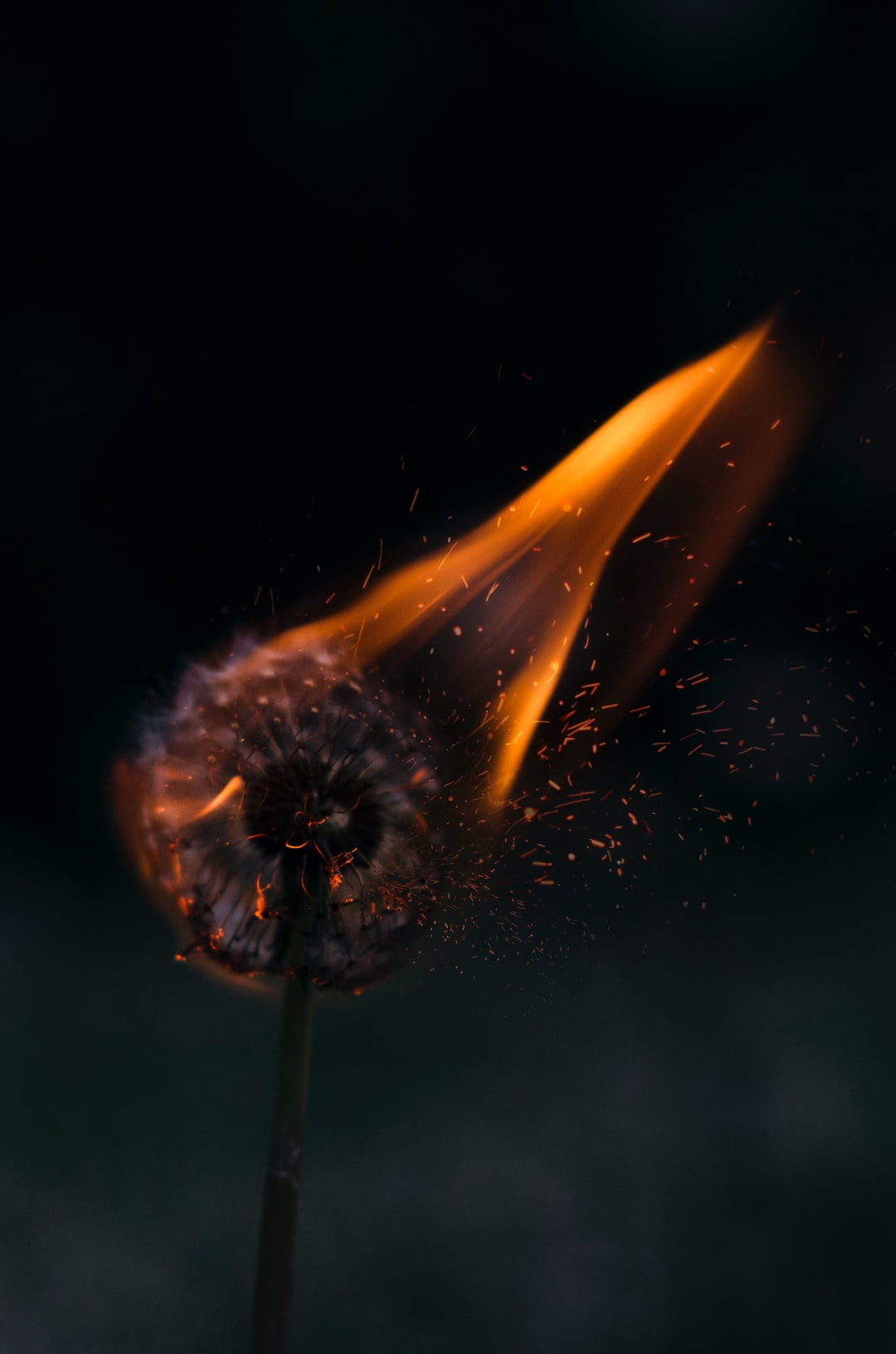 Dark Fire Pictures Download Free Images On Unsplash