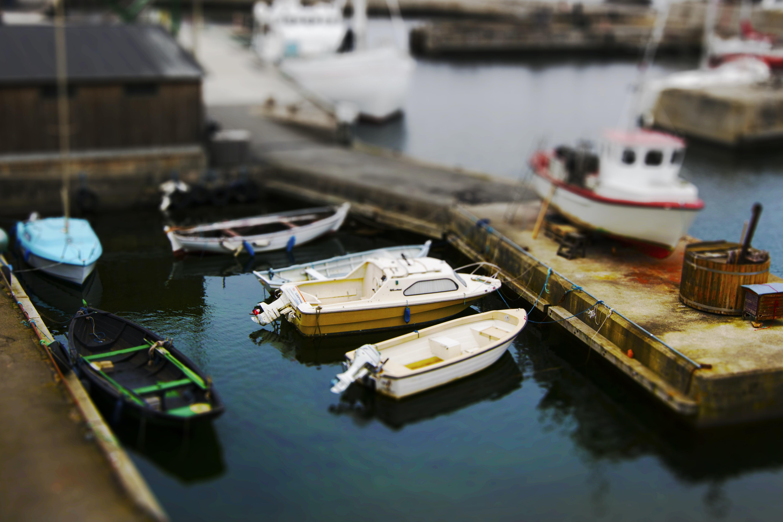 Free Unsplash photo from Mantas Hesthaven