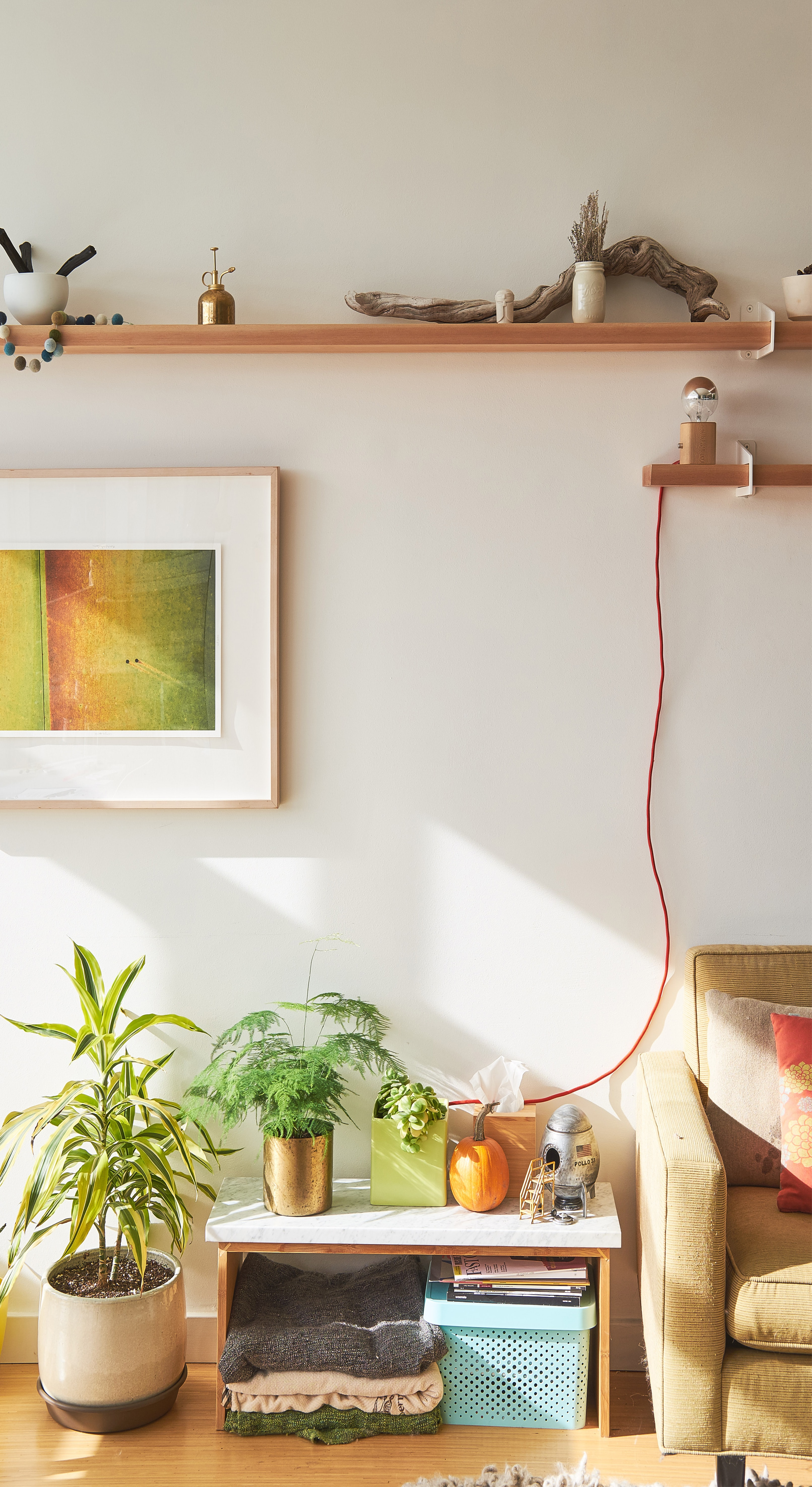 Interior decor white wall with wooden shelves, wall painting, plants, cable and chair in home