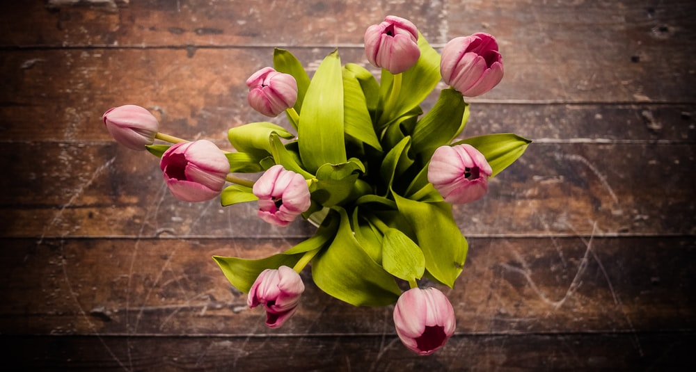 pink petaled flower centerpiece on brown wooden surface in high angle shot