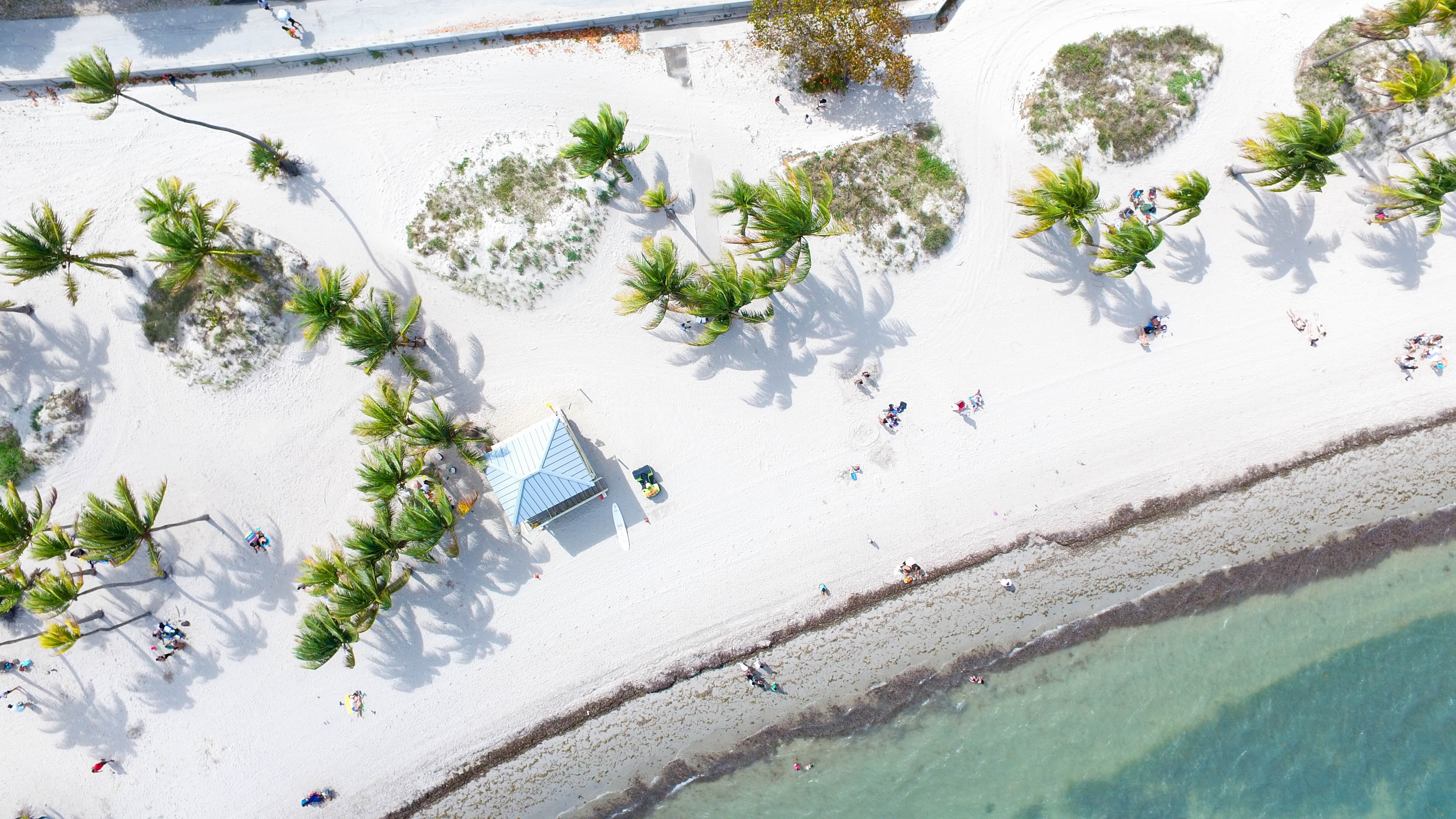 Drone aerial view of a white sand beach with people, palm trees, and a hut