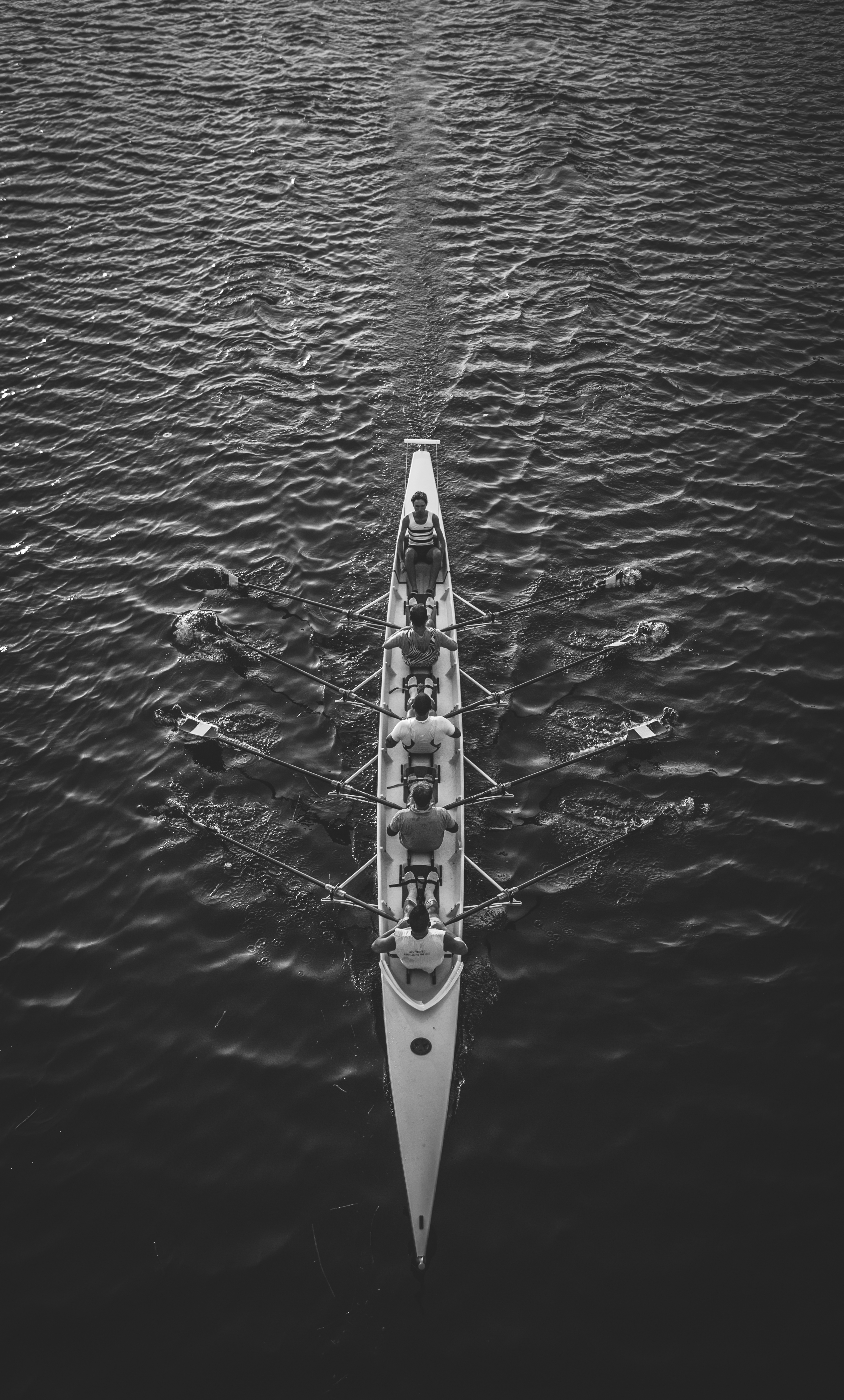 Team Rowing Together