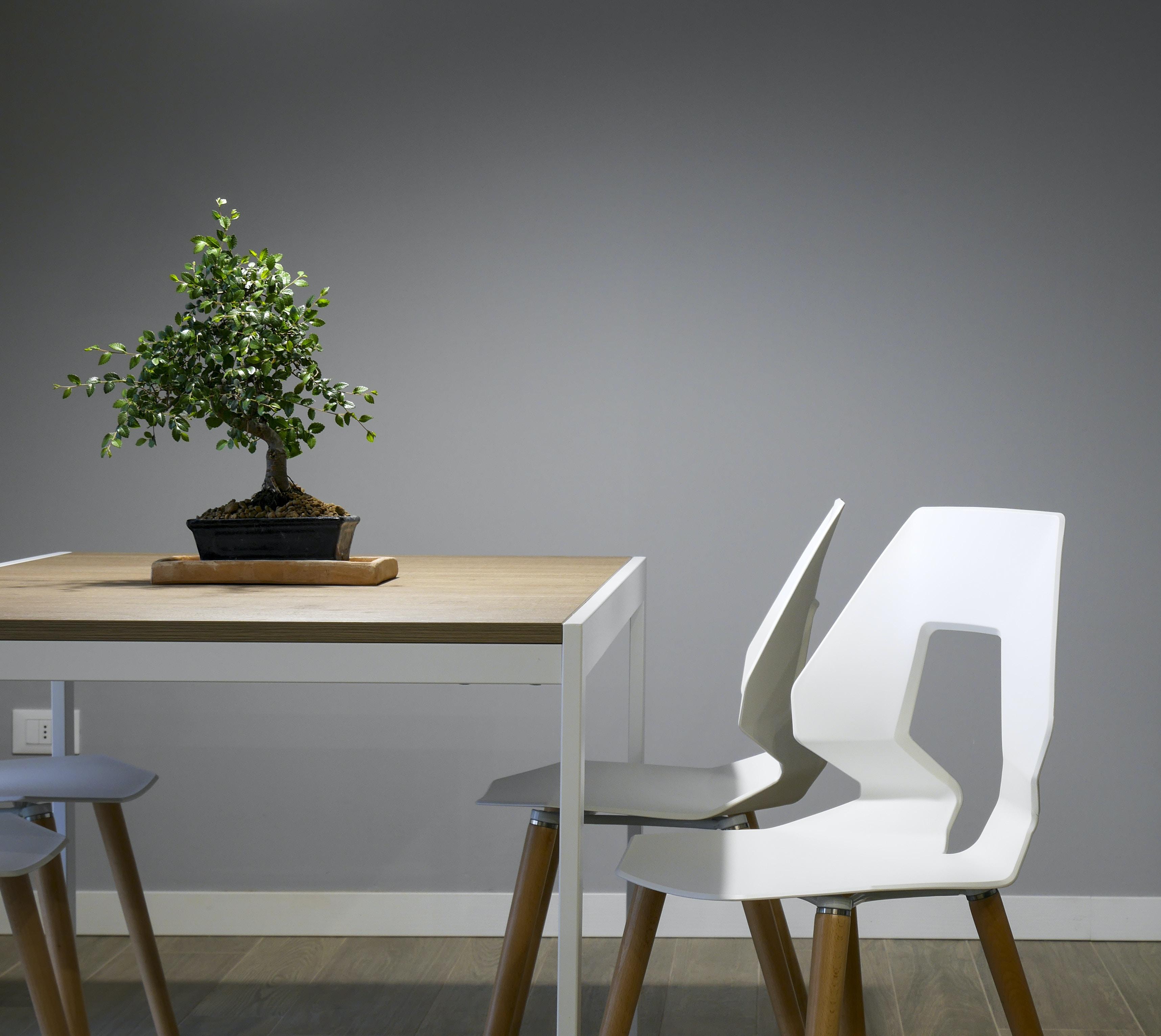 Modern Interior Design